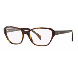 Ray-Ban RB5341 2012 53 Tortoise - Highstreet